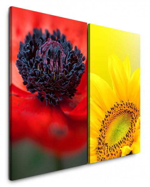 2 Bilder je 60x90cm Sonnenblume Gelb Mohnblume Blüte Blumen Makro Rot