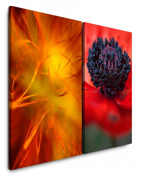2 Bilder je 60x90cm Mohnblume Blumen Makro Orange Rot Nahaufnahme