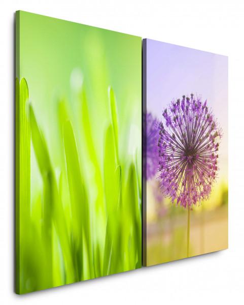 2 Bilder je 60x90cm Gras Grashalme Pusteblume Grün Violett Sommer Makro