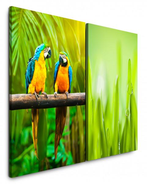 2 Bilder je 60x90cm Palmen Papagei Tropische Tiere Grün Regenwald Paradies