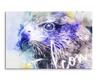 Falkenkopf als Premium Leinwandbild