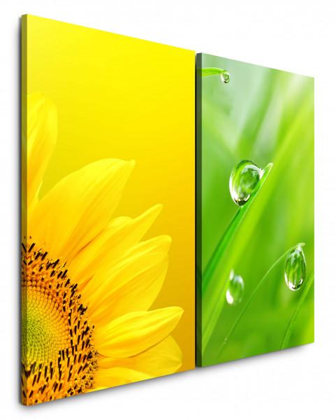 2 Bilder je 60x90cm Sonnenblume Gelb Tropfen Wiese Gras Grün Makro