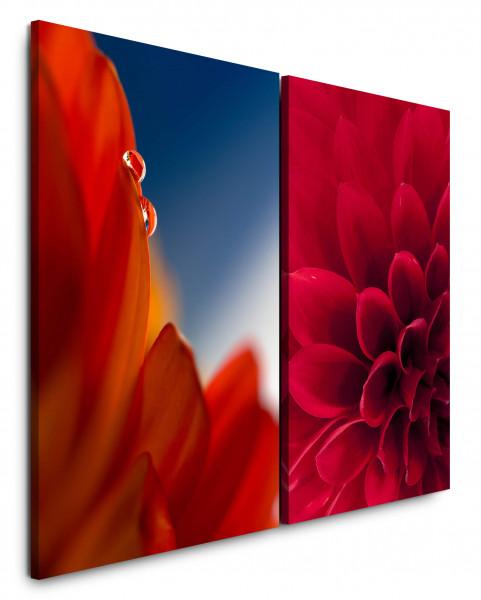 2 Bilder je 60x90cm Dahlie Rot Blumen Nahaufnahme Tropfen Harmonie Warm