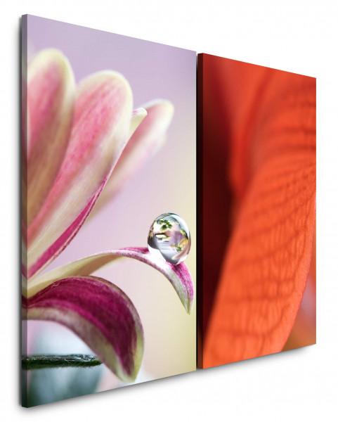 2 Bilder je 60x90cm Blumen Blüten Rot Tropfen Nahaufnahme Fotokunst Schön
