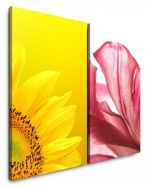 2 Bilder je 60x90cm Sonnenblume Gelb Blüten Sommer Makro Blumen Rosa