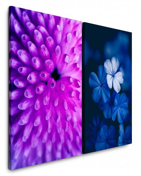 2 Bilder je 60x90cm Koralle Bachblüte Unterwasser Nahaufnahme Blau Violett Makrofotografie