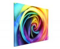 Leinwandbild Rose in Regenbogenfarben Abstrakt