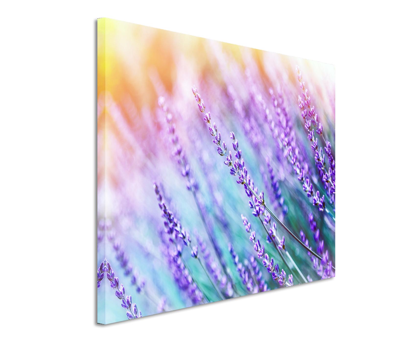 Wandbild Lavendel-Feld online kaufen | bestforhome.de | bestforhome_de