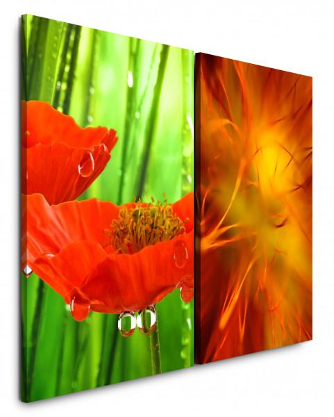 2 Bilder je 60x90cm Blumen Rot Grün Tropfen Nahaufnahme Orange Erfrischend