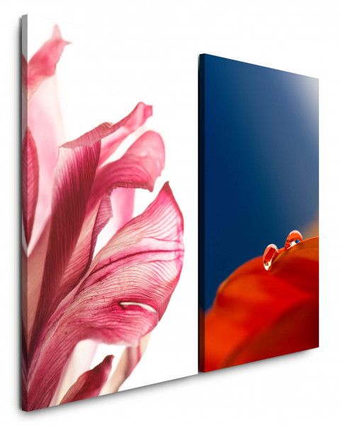 2 Bilder je 60x90cm Blumen Tropfen Harmonie Relax Rot Blau Makro
