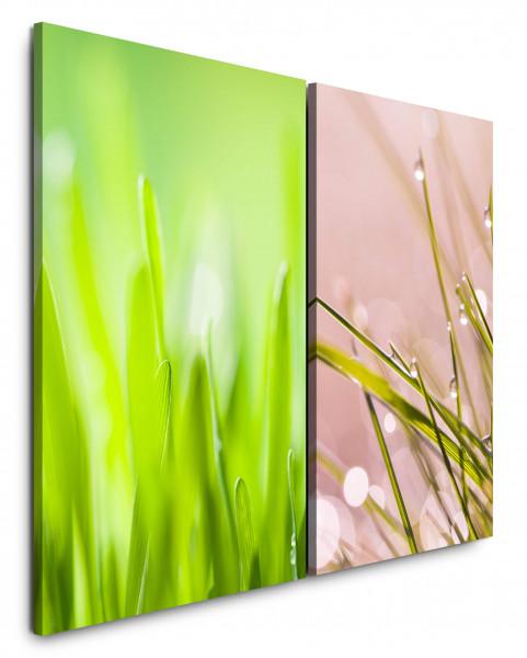 2 Bilder je 60x90cm Gras Grashalme Grün Tropfen Makro Morgentau Wiese