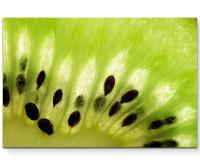 Premium Leinwandbild Die Kiwi