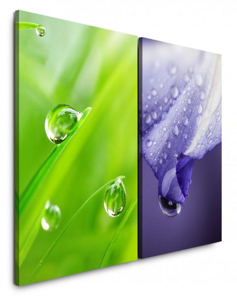 2 Bilder je 60x90cm Gras Grün Grashalme Tropfen Nahaufnahme Violett Erfrischend