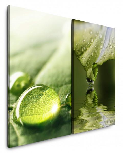 2 Bilder je 60x90cm Grün Wassertropfen Frisch Beruhigend Nahaufnahme Harmonie Wasser