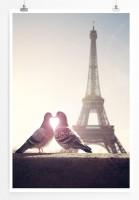 Poster Tauben vor dem Eiffelturm