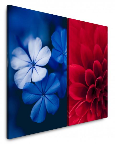 2 Bilder je 60x90cm Dahlie Bachblüte Rot Blau Nahaufnahme Makro Blumen