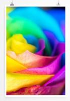 Poster abstrakt - Bunte Rose
