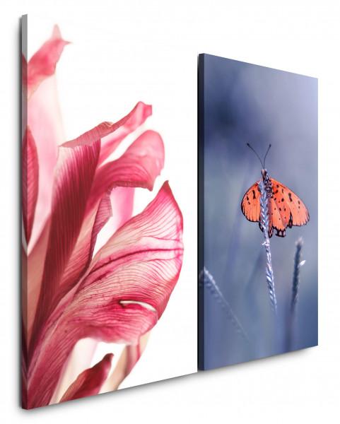 2 Bilder je 60x90cm Amaryllis Schmetterling Blume Blüte Rot Türkis Nahaufnahme