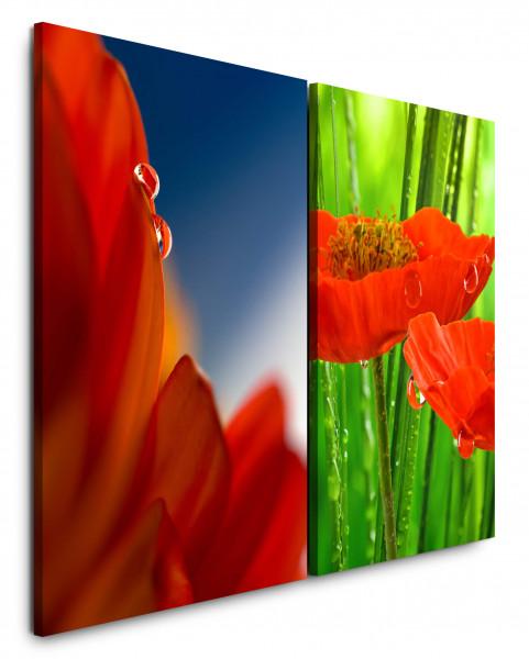 2 Bilder je 60x90cm Rot Tropfen Grün Mohnblume Blüten Nahaufnahme Erfrischend