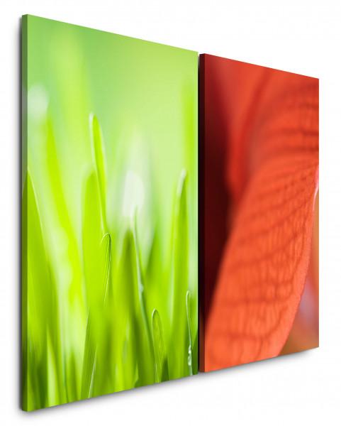 2 Bilder je 60x90cm Gras Grün Rot Blume Nahaufnahme Frisch Sommer