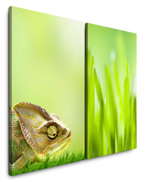 2 Bilder je 60x90cm Chamäleon Wiese Grass Grün Frisch Sommer Sonne