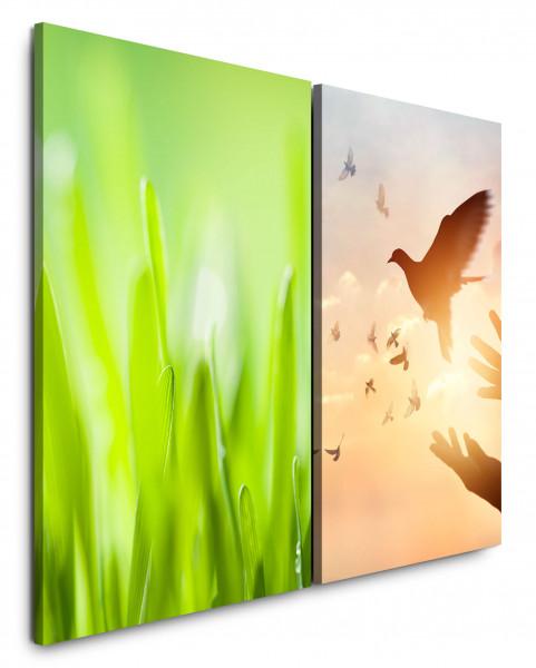 2 Bilder je 60x90cm Taube Gras Grün Freiheit Frieden Himmel Harmonisch