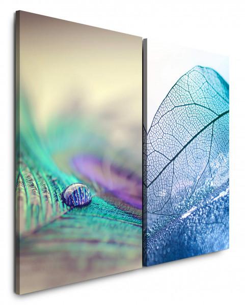 2 Bilder je 60x90cm Pfaufeder Wassertropfen Blatt Blau Makro Nahaufnahme Makrofotografie