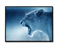 brüllende Löwin