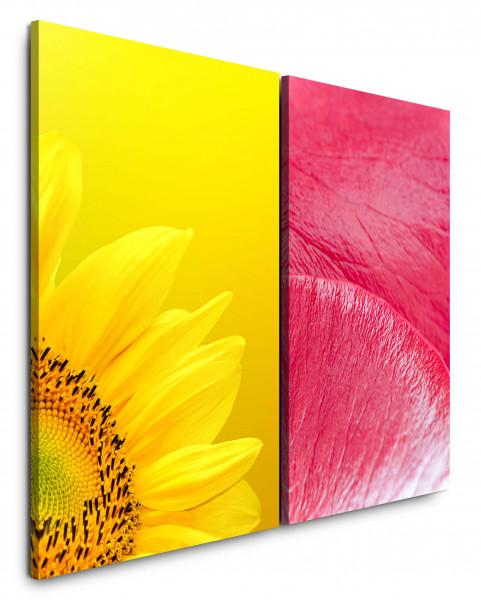 2 Bilder je 60x90cm Sonnenblume Gelb Rosa Blüte Warm Nahaufnahme Makrofotografie