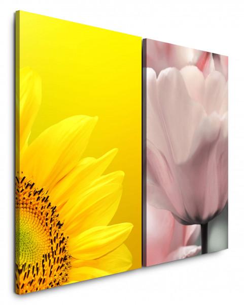 2 Bilder je 60x90cm Sonnenblume Gelb Weiße Tulpe Blumen Nahaufnahme Sommer