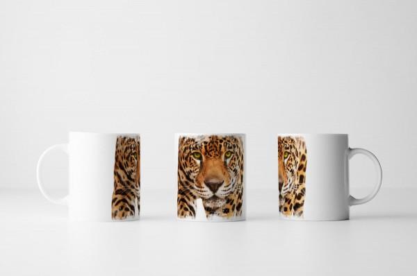 Tasse Leopard vor weißem Hintergrund