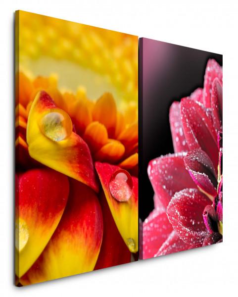2 Wandbilderje 60x90cm Blume Blüte Rosa Wassertropfen Nahaufnahme Makro Fotokunst