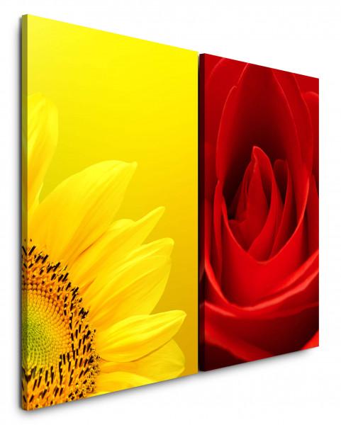 2 Bilder je 60x90cm Sonnenblume Gelb Rose Rot Nahaufnahme Romantisch Liebe