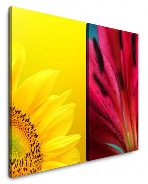 2 Bilder je 60x90cm Sonnenblume Gelb Rot Blumen Sommer Nahaufnahme Makrofotografie