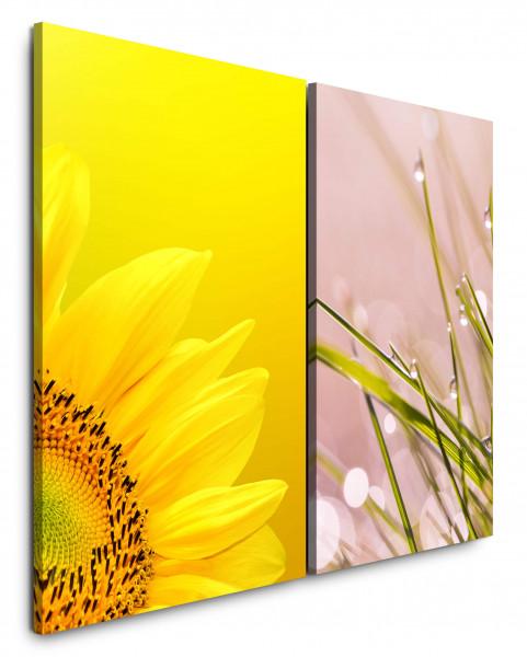 2 Wandbilderje 60x90cm Sonnenblume Gelb Grashalme Rosa Tropfen Morgentau Gras