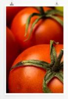 Poster Frische reife Tomaten