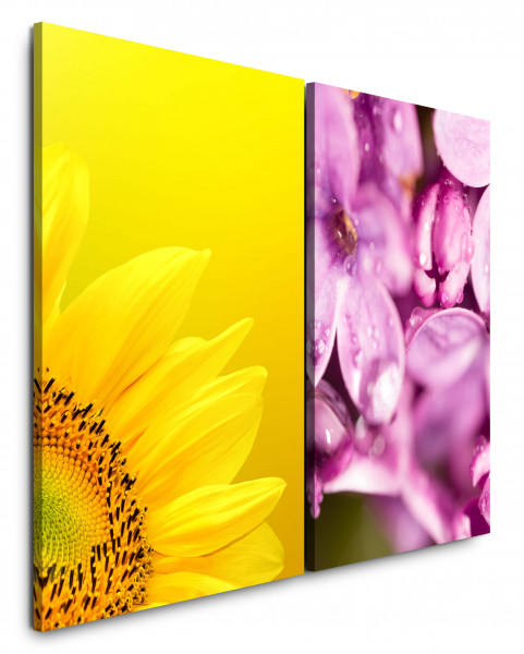 2 Bilder je 60x90cm Sonnenblume Gelb Rosa Blumen Nahaufnahme Sommer Blüte