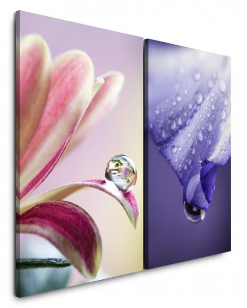 2 Bilder je 60x90cm Blumen Wassertropfen Makro Blüten Violett Harmonie Makrofotografie