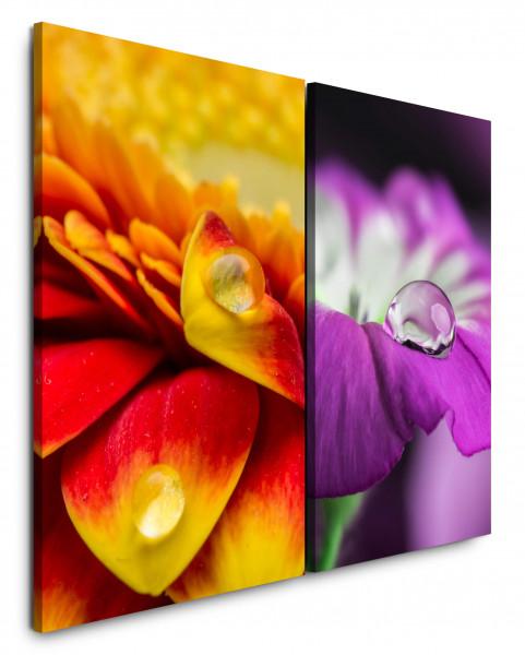 2 Wandbilderje 60x90cm Tropfen Makro Rot Blüten Blumen Violett Orange