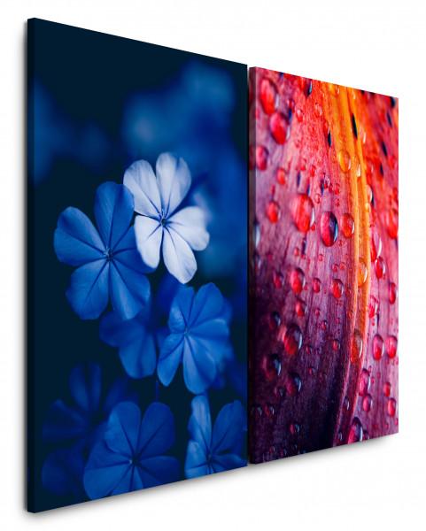 2 Bilder je 60x90cm Blaue Blumen Wassertropfen Tropfen Frisch Nahaufnahme Makrofotografie