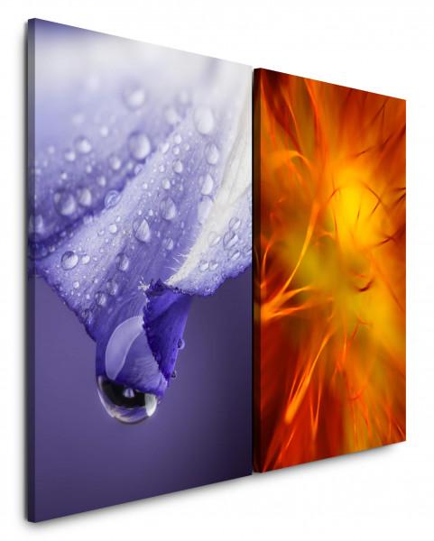 2 Bilder je 60x90cm Tropfen Blüte Violett Orange Nahaufnahme Morgentau Blumen