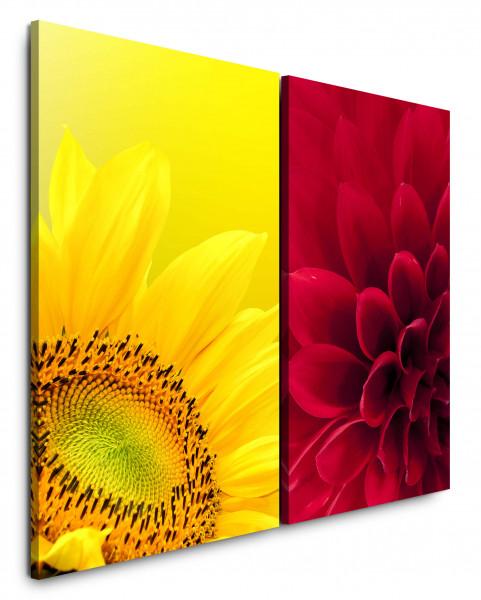 2 Bilder je 60x90cm Dahlie Sonnenblume Gelb Rot Nahaufnahme Blumen Makrofotografie