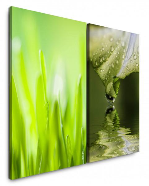 2 Bilder je 60x90cm Gras Grashalme Grün Tropfen Frisch Wasser Nahaufnahme