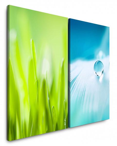 2 Bilder je 60x90cm Grass Grashalme Grün Feder Weiß Tropfen Nahaufnahme
