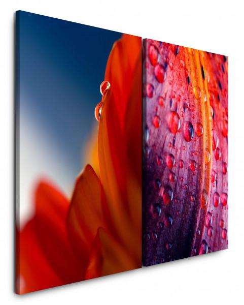 2 Bilder je 60x90cm Blumen Wassertropfen Rot Blüten Nahaufnahme Makro Fotokunst