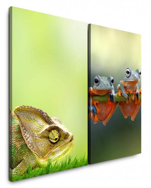 2 Bilder je 60x90cm Chamäleon Wiese Frösche Abhängen Tropisch Exotische Tiere
