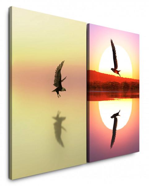 2 Bilder je 60x90cm Freiheit Sonne Vögel Adler Weißkopfseeadler Sonnenuntergang Harmonie