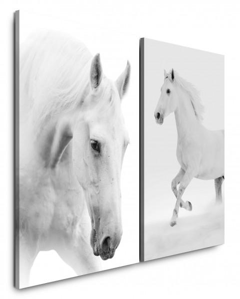 2 Wandbilderje 60x90cm Pferde Weißes Pferd Elegant Reiten Schimmel Freiheit