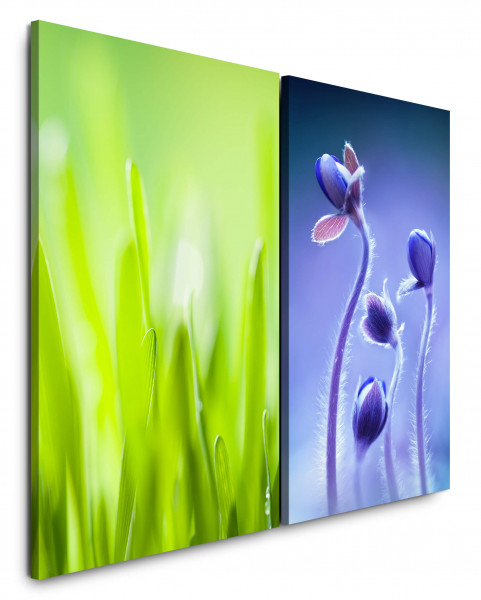 2 Bilder je 60x90cm Grashalme Grün Blau Blumen Nahaufnahme Blüten Morgentau