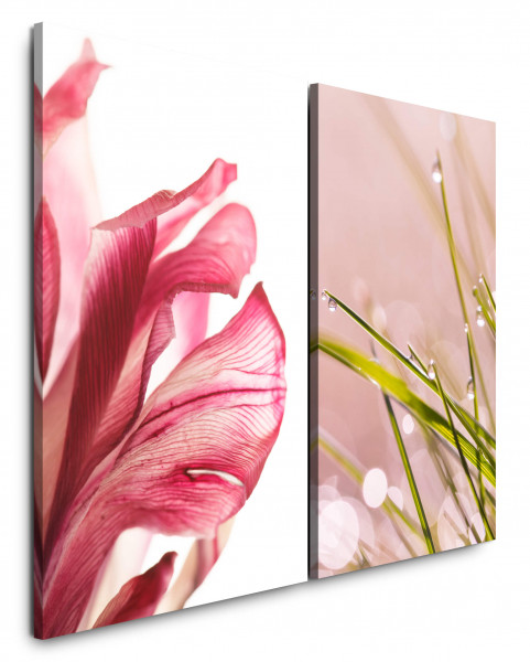 2 Bilder je 60x90cm Blüte Gras Grashalme Wassertropfen Makro Nahaufnahme Rosa